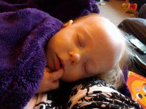 Sleeping Amber